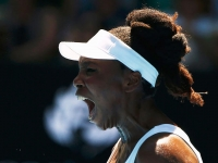 Despiden a comentarista por comparar a Venus Williams con Gorila